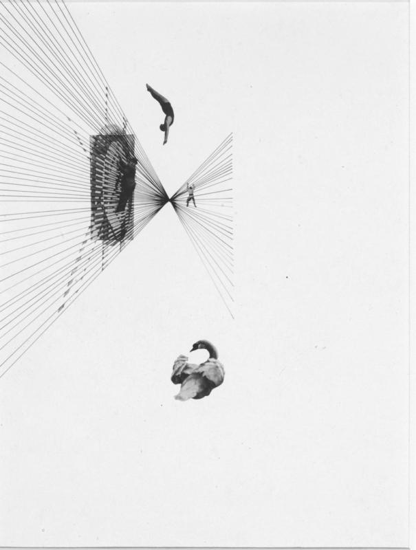 Laszlo Moholy-Nagy: Leda and the swan